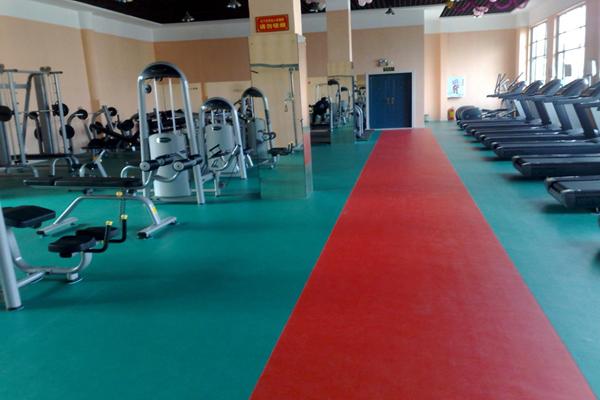 鹏辉塑胶地板 乒乓球地板 pvc塑胶地板 运动地胶 羽毛球地胶 篮球场地板